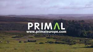 Primal Pictures Ltd Primal Europe Ltd Updated Their Cover Photo Primal Europe Ltd