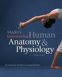 Human Anatomy And Physiology Books 11 Best Art Books Images On Pinterest Bestseller Books Books