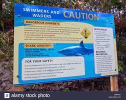 shark advisory sign warning cape cod massachusetts stock photo