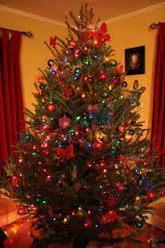 colored lights christmas tree decorating ideas photo album home
