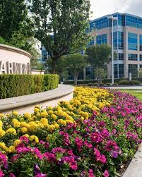 Landscaping Company In Miami by Commercial Landscaping Landscape Services U0026 Maintenance