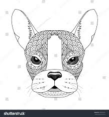 vector illustration french bulldog coloring page stock vector