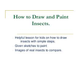 how to draw paint insects