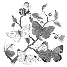 black and white butterfly tattoos designs tattooshunt com