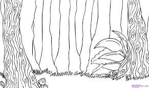 drawn rainforest jungle scenery pencil and in color drawn