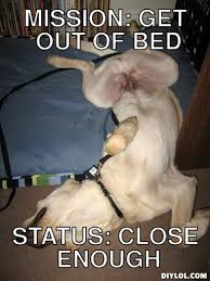 Get Out Of Bed Meme - mission get out of bed status close enough lol fur funnies