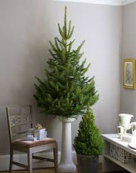 Small Decorated Real Christmas Trees by 52 Small Christmas Tree Decor Ideas Comfydwelling Com