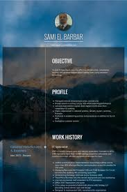 Security Specialist Resume Sample by It Specialist Resume Samples Visualcv Resume Samples Database