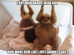 Sloth Whisper Meme - sloth meme whisper rape more information djekova