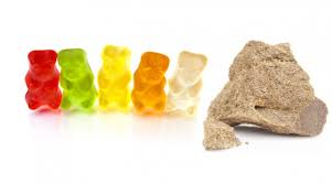 cannabis candy how to make marijuana gummy bears drugs