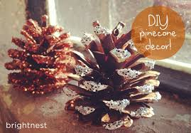 how to make glitter pinecones hometalk