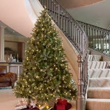 amazon com downswept douglas fir medium pre lit christmas tree