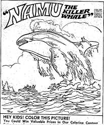 coloring page killer whale killer whale drawing for kids at getdrawings com free for personal