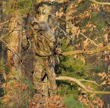 one of the realtree camo patterns in a wearing