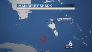 Florida Shark Attack Map Coast Guard Responds To Reported Shark Attack In Bahamas Nbc 6