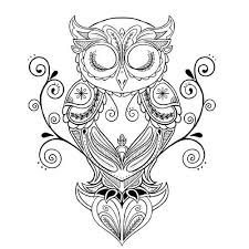 best 25 owl tattoo drawings ideas on pinterest owl sketch owl