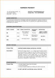 resume format doc for fresher accountant latest resume format for bca freshers 2013 bongdaao com accountant