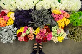 los angeles florist hello from the los angeles flower district hello from