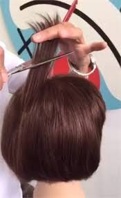 best days to cut hair tip of the day how to cut to get volume at the crown career