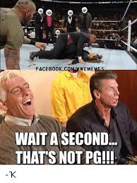 Wwf Memes - that s not pg that s not pg know your meme