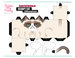 grumpy cat wrapping paper what to give the cat who hates everything catch my party