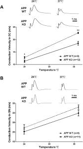Amyloid precursor protein modulates Nav1 6 sodium channel currents