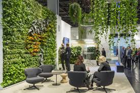 low light outdoor plants very low light houseplants office green design plant