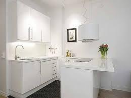 studio apartment kitchen ideas amazing small apartment galley kitchen ideas apoc by
