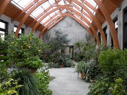 garden greenhouse ideas greenhouse gardening tropical fruits plants and flowers
