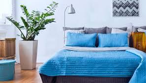 pflanzen für schlafzimmer schlafzimmer pflanzen möbelideen