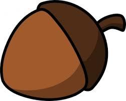 acorn vector download 15 vectors page 1