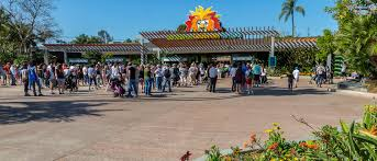 San Diego Zoo Safari Park Map by San Diego Zoo Balboa Park