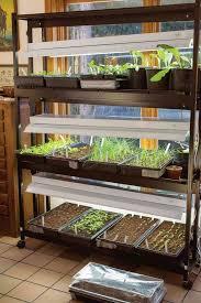 best grow lights for vegetables 28 best diy grow vegetables indoor images on pinterest gardening
