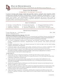 Resume Summary Statement Samples by Resume Project Coordinator Resume Summary Sample Resume Format