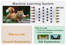 explainable artificial intelligence