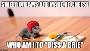 Mouse Memes - mouse trap memes imgflip