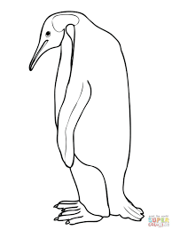 emperor penguin coloring free printable pages babies