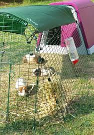 Best Rabbit Hutches Meet The Eglu The Best Guinea Pig U0026 Rabbit Outdoor Runs And Hutch