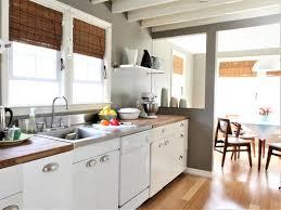 White Kitchen Cabinet Door Kitchen Flat Panel Vs Raised Panel Interior Doors Cabinet Door