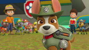 tracker jungle pup paw patrol video clip s3 ep315