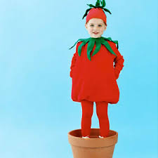tomato costume costumes easy homemade halloween costumes and