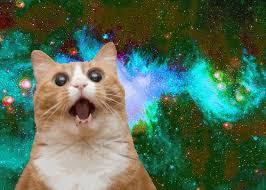 Omg Cat Meme - space memes omg cat in space