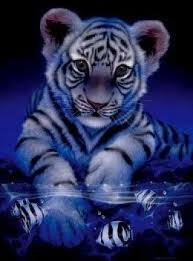 141 best tattoos images on pinterest tiger tattoo big cats and