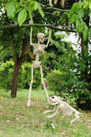 Fun Halloween Decoration Ideas Best 25 Halloween Skeleton Decorations Ideas On Pinterest