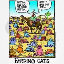 Herding Cats Meme - safeword rainbow s new 2013 cover for the extended version my