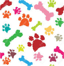 colorful paw prints and bones