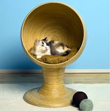 modern cat furniture with innovative design