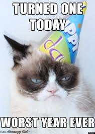 Grumpy Cat Meme Happy - happy birthday grumpy cat pictures