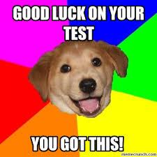 Good Luck Memes - good luck memes 28 images good luck puppy i d wish you good