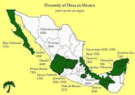 mexico map 1800 floristic richness and endemism in mexico